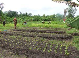 Travail des filles en formation agricole